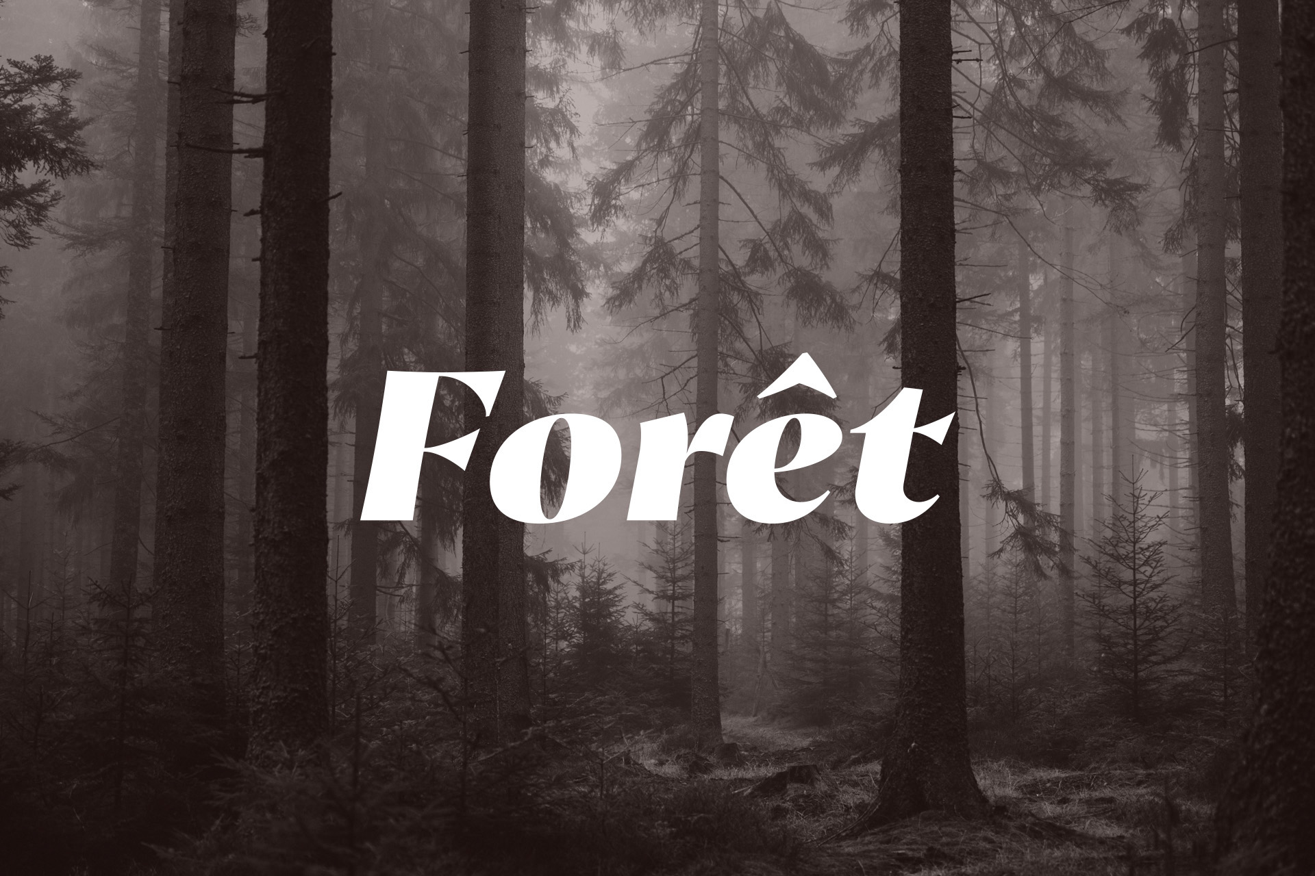 foret_2
