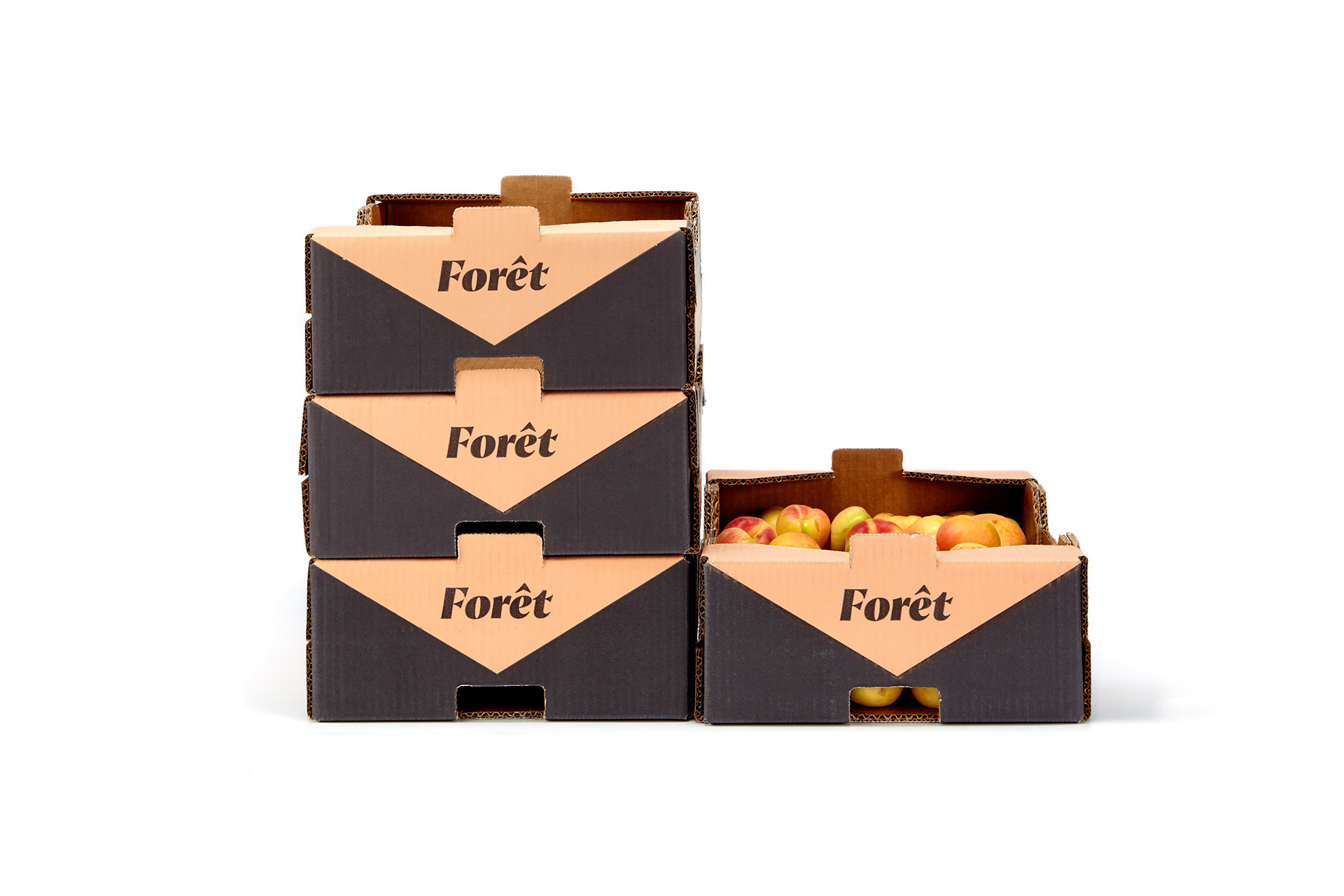 foret b